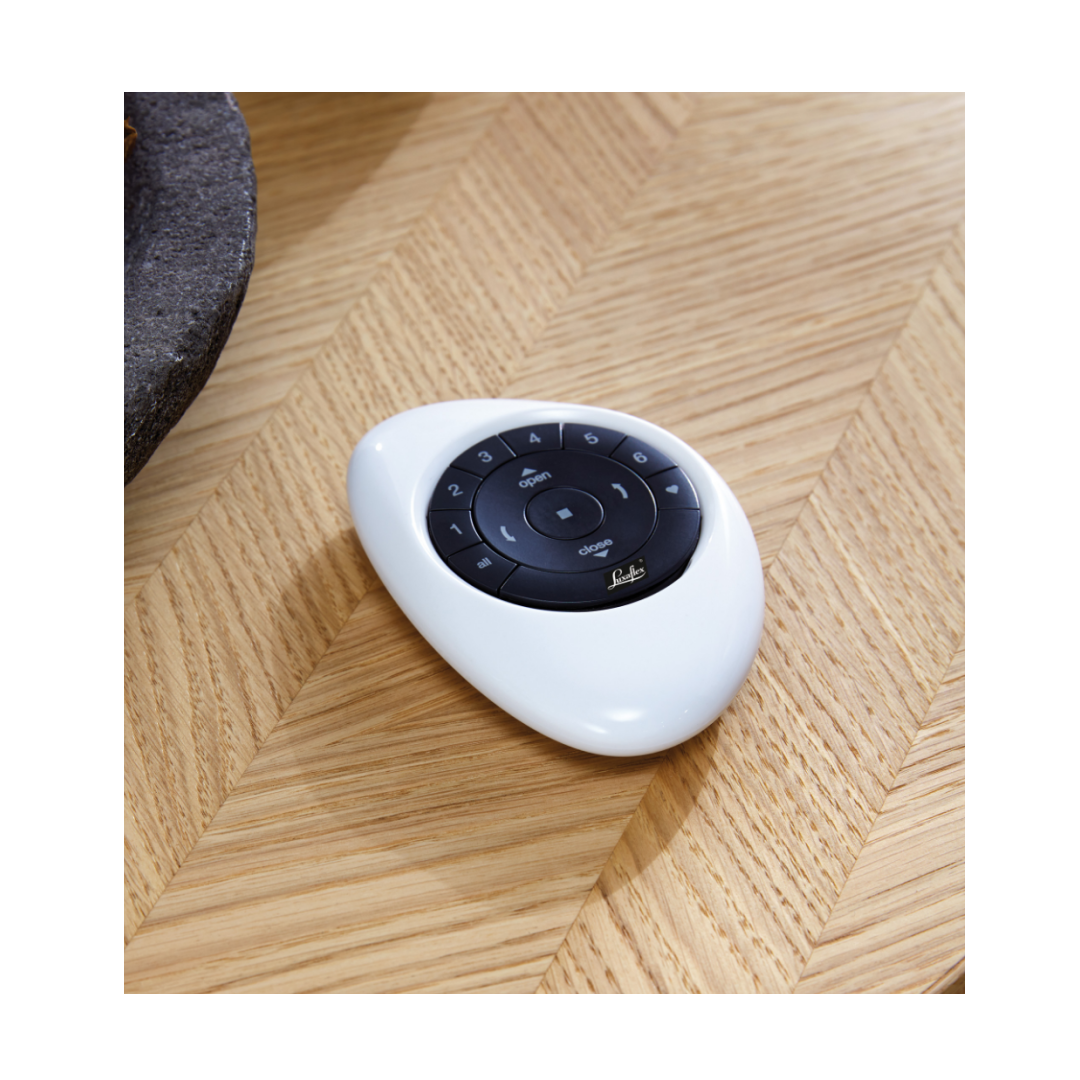 PowerView® pebble with white shell and black controls