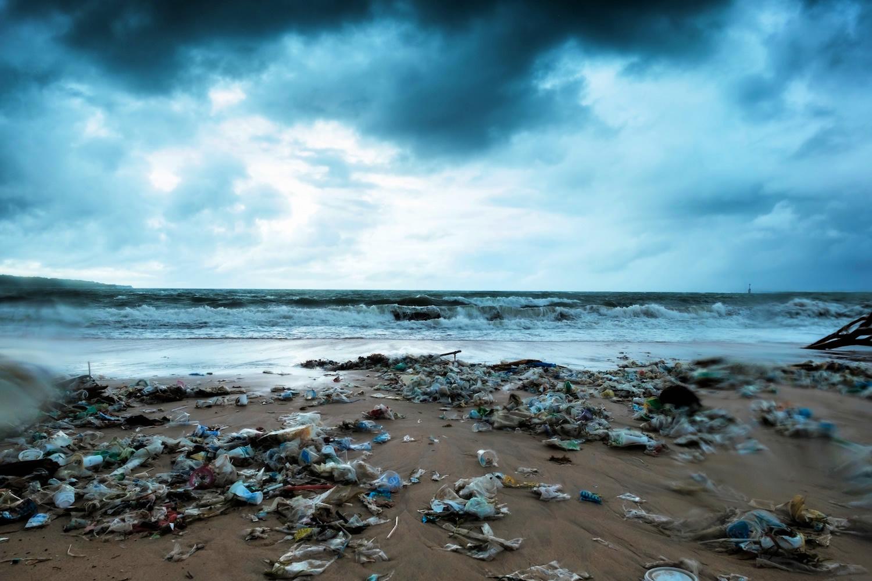 Pollution along shoreline