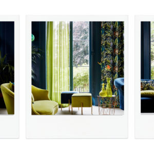 Journey Beyond fabric curtains in Contemporary living room.